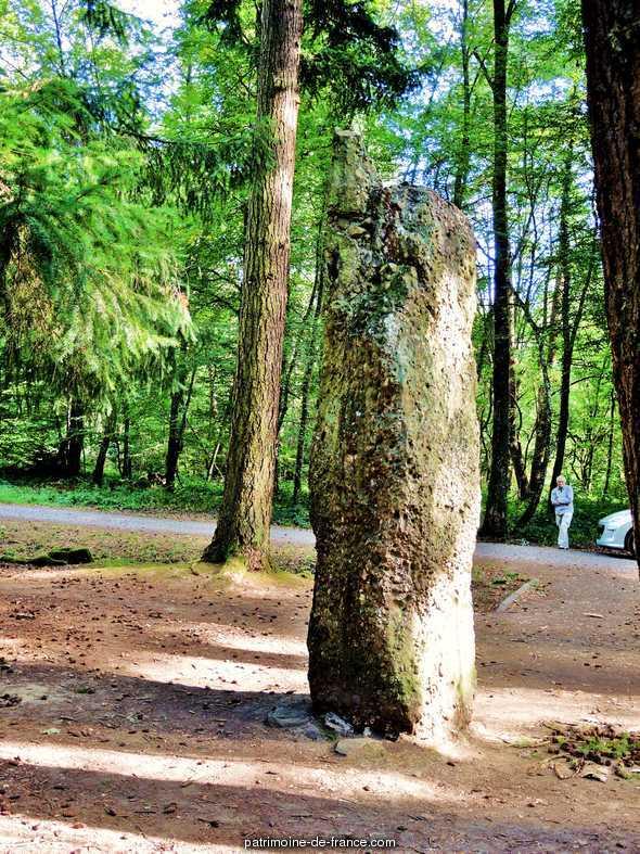 Menhir dit Langenstein près du cimetière roumain à Soultzmatt.