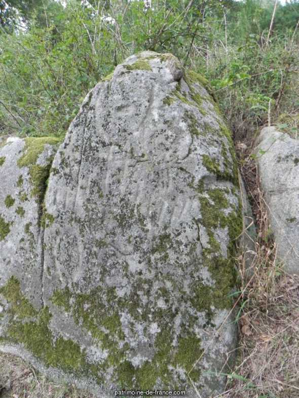Roches gravées à Mauleon.