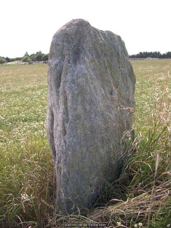 Menhir said bathroom stone, French Heritage monument to Guerande.