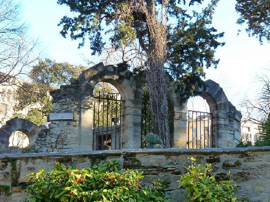 Jardin des plantes montpellier herault - Jardin des plantes de montpellier ...