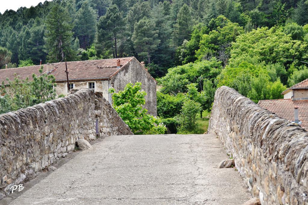 Pont du Diable à Olargues.