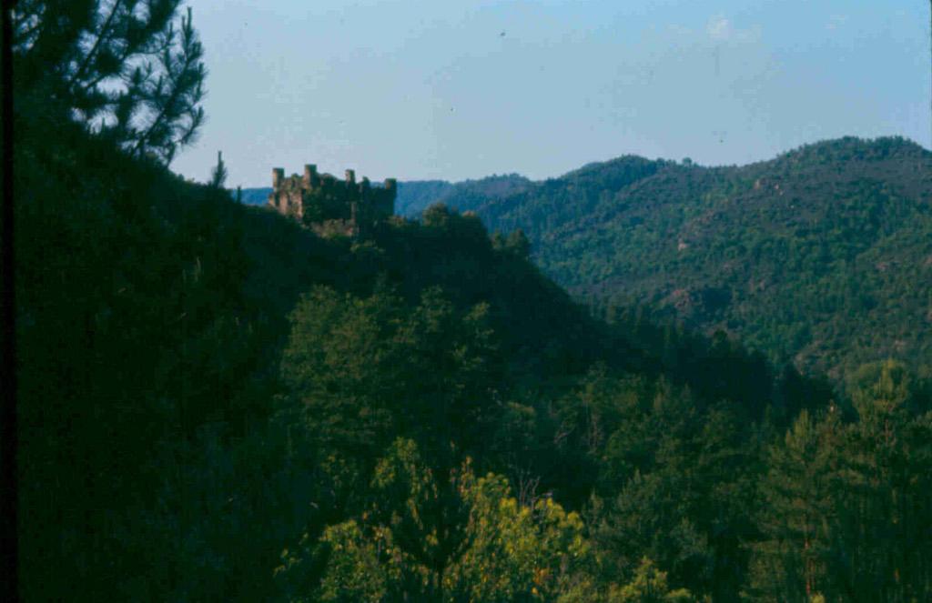 Château de Moissac Vallée Française à Moissac vallee francaise.