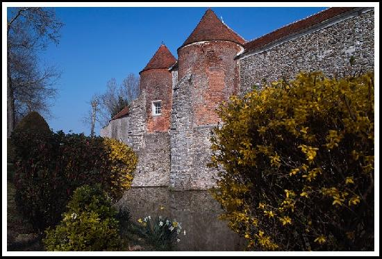 Castle of Launoy-Renault, French Heritage monument to Verdelot.