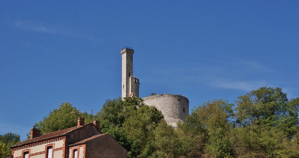 Château (ruines) à Castelnau de levis.