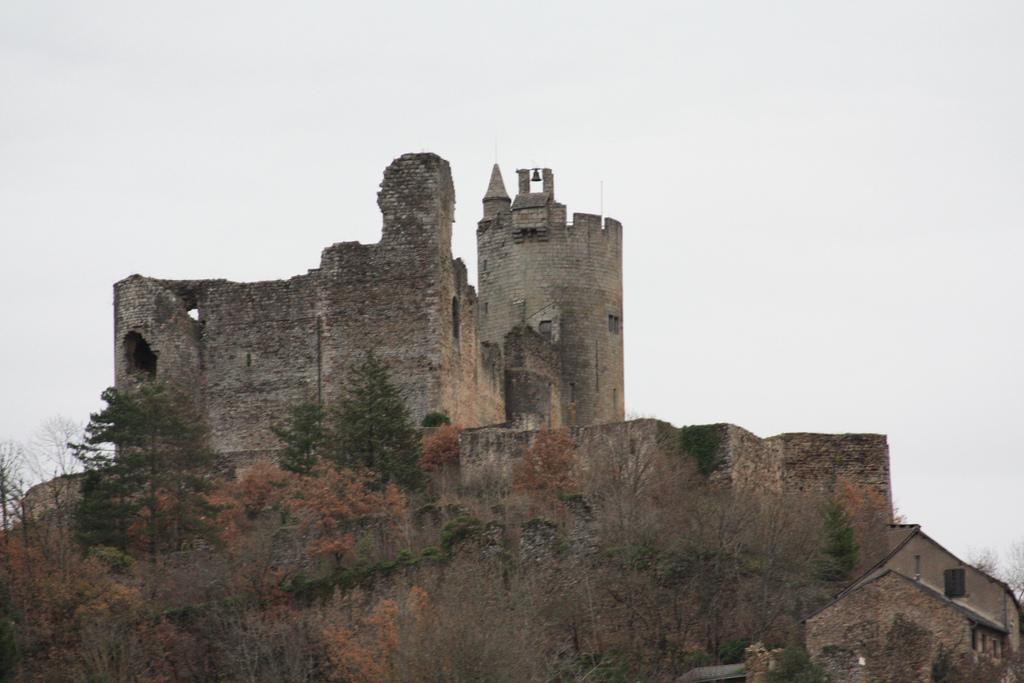 Château (vestiges) et sa deuxième enceinte à Najac.