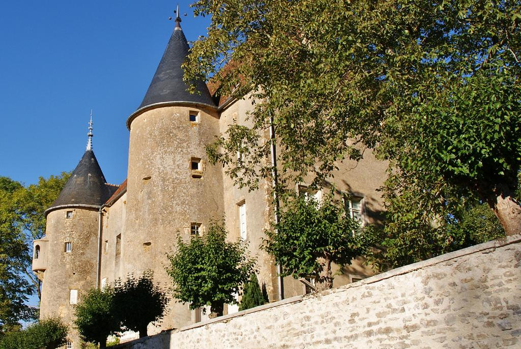Castle, French Heritage monument to Domecy sur cure.