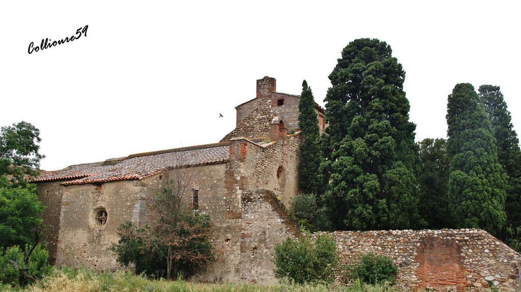 Prieuré Saint-Estève de Monastir-del-Camp à Passa.