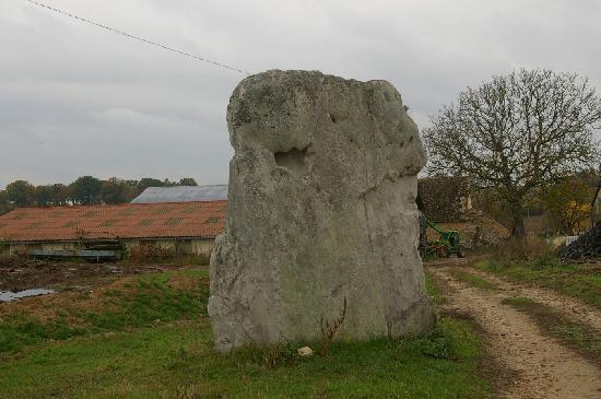 Menhir dit La Pierre Fiche à Duneau.