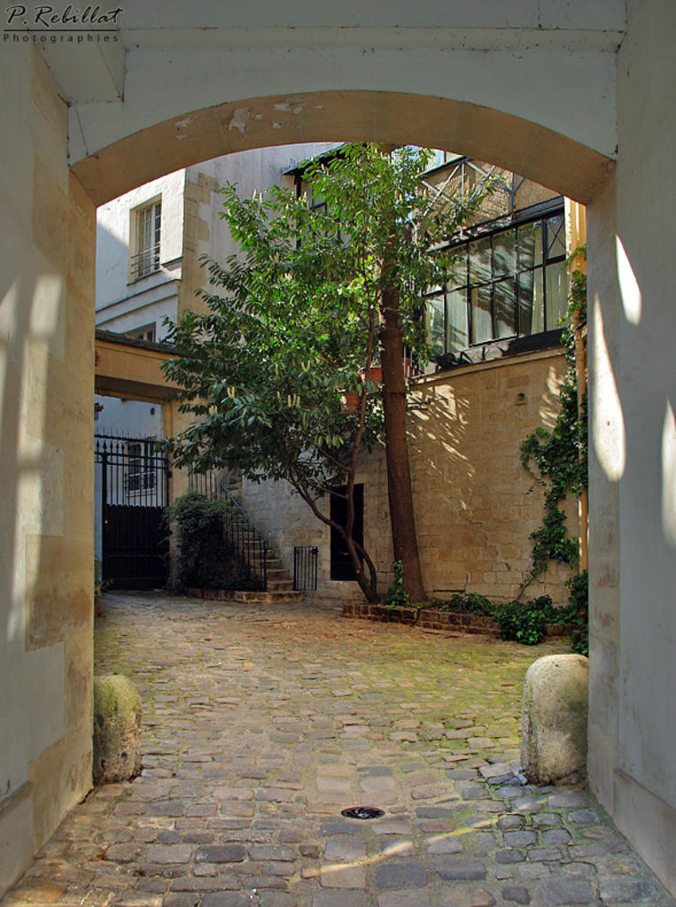 Cours de Rohan à Paris 6eme arrondissement.